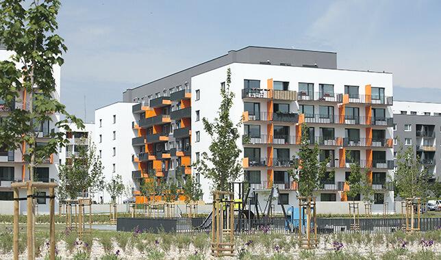 BD Tulipa City - reference Luwex, a.s.